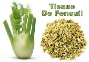 tisane-de-fenouil-300×208