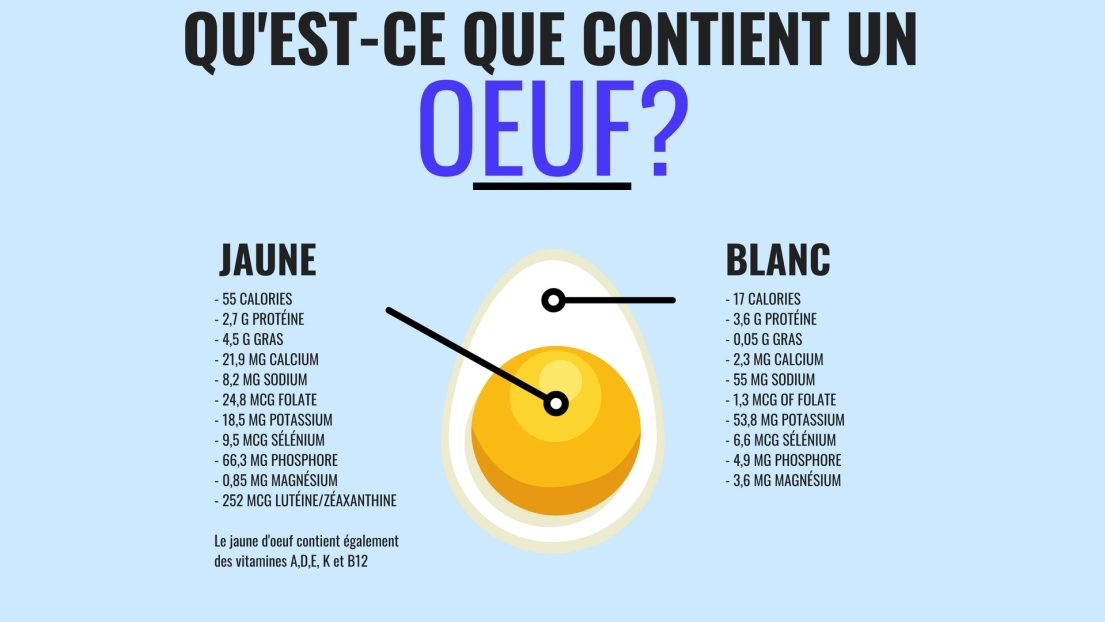 composition-nutritionellle-dun-oeuf